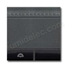 Tecla con símbolo timbre BTicino L4915M2DN antracita