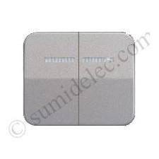 Tecla grupo 2 pulsador conmutador luminoso simon 75 gris
