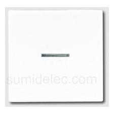 Tecla interruptor pulsador con visor blanco ls990 jung ls990ko5ww