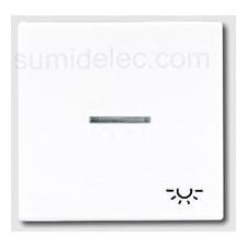 Tecla pulsador con visor simbolo luz blanco ls990 ls990ko5lww jung