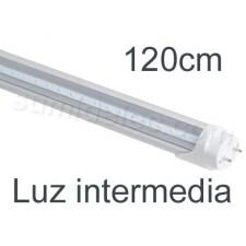 Tubo LED 120cm 20W color luz intermedia última generación