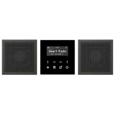 Kit Smart Radio estéreo color negro antracita RAD AL 2928 AN LS de Jung