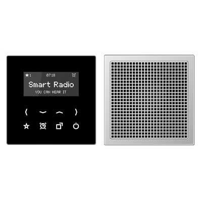 Kit Smart Radio mono color negro aluminio RAD AL 2918 serie LS de Jung