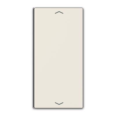 Tecla emisor inalámbrico LS 2 fases LS 402 TSAP
