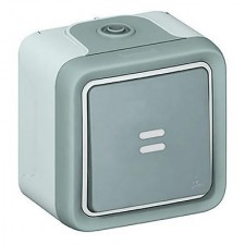 Pulsador con luminoso estanco gris 069722 Legrand